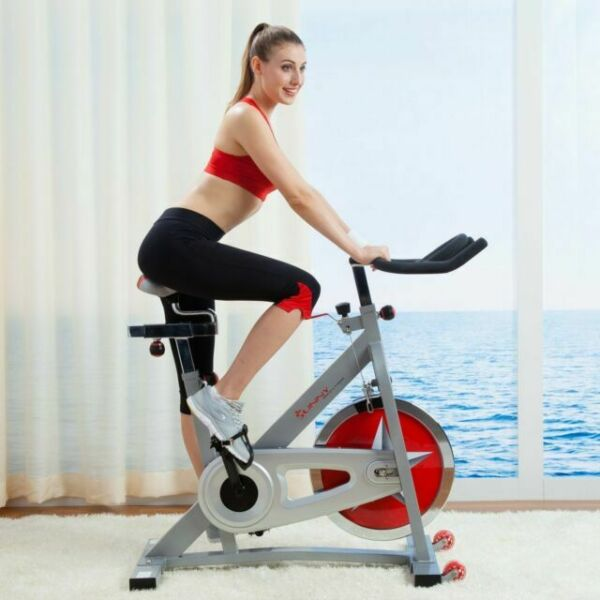 Pink Sunny Health and Fitness Indoor Cycling